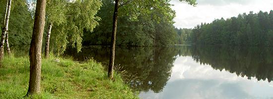 skogssjo_15382_550x200