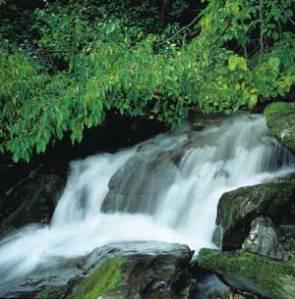 water_fall_1