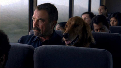 """""""Jesse Stone"""" (character in crime movies) and his dog"""