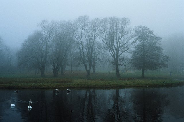 Gloomy Riga in autumn, eatriga.lv